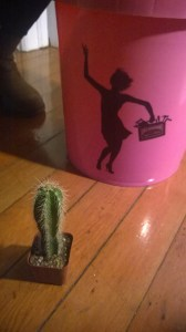 Pink Bucket and Cactus