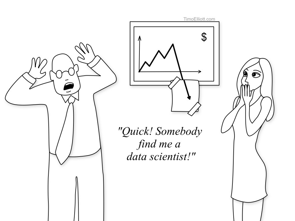 What is a Data Scientist and What Do They Do? (Cartoons