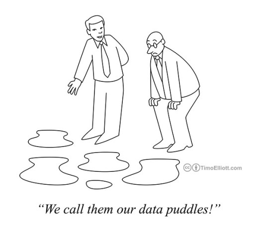 we call them our data puddles cartoon