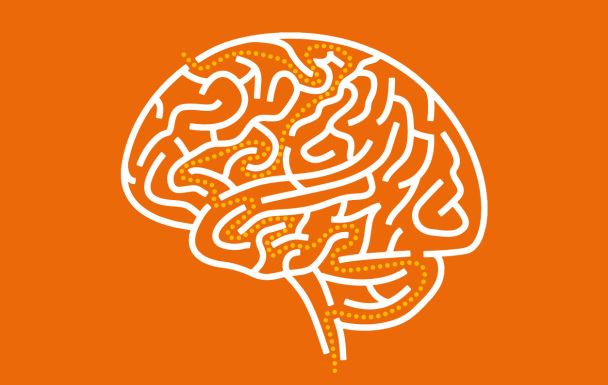 orange-brain-path-608x385.jpg