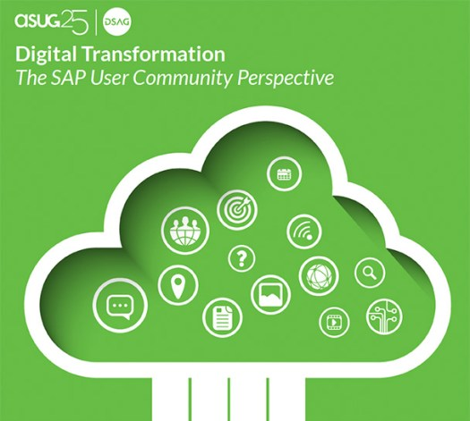asug dsag digital perspective