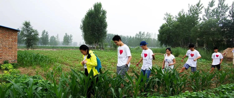 China PTP Microfinance