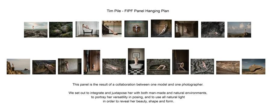 fipf-hanging-plan