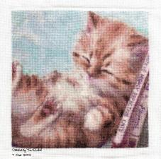 QS Bookend Kitties