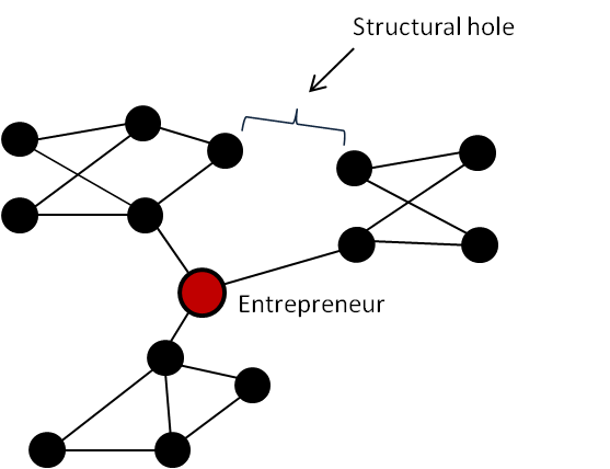 Down the Rabbit Hole: How Structural Holes in