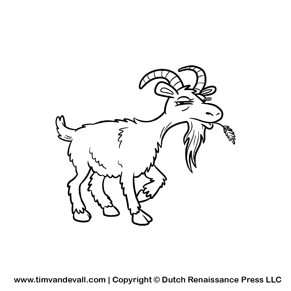 Goat Eating Grass Drawing