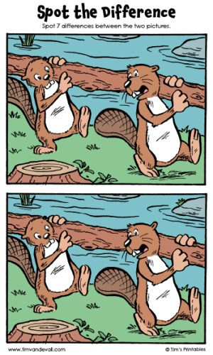 """Spot the Difference 15 - """"Beaver Builders"""""""