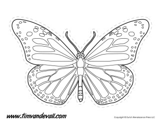 Monarch Butterfly Outline Tim s Printables