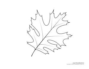 Printable Leaf Template