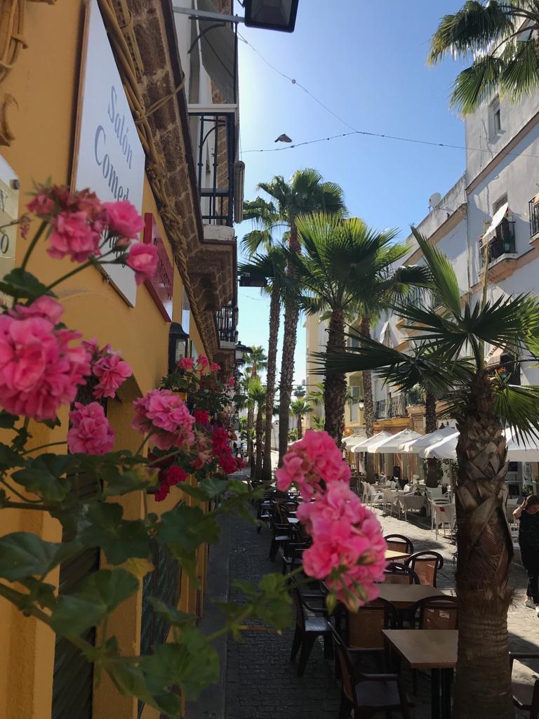 Calle Virgen de la Palma 11 x doen in droom die Cadiz heet