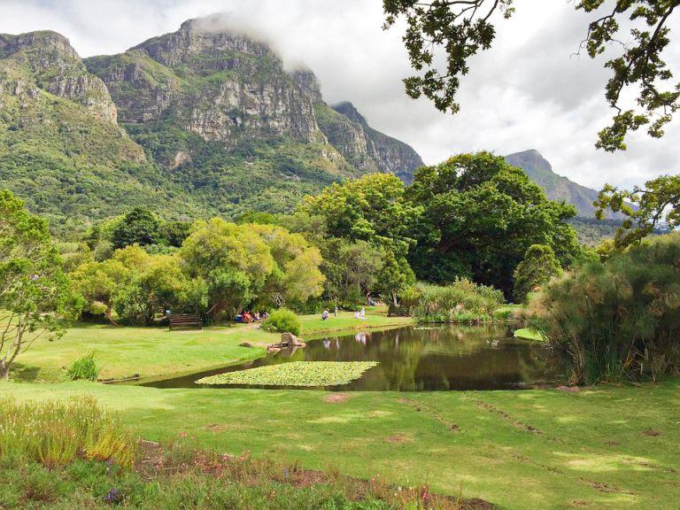 kaapstad - Dwaal door de botanische tuinen van Kirstenbosch