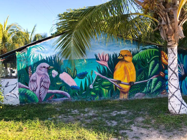 Waar moet je overnachten in Bacalar mexico