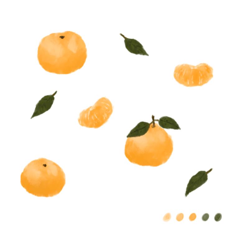 水彩橘子插畫教學