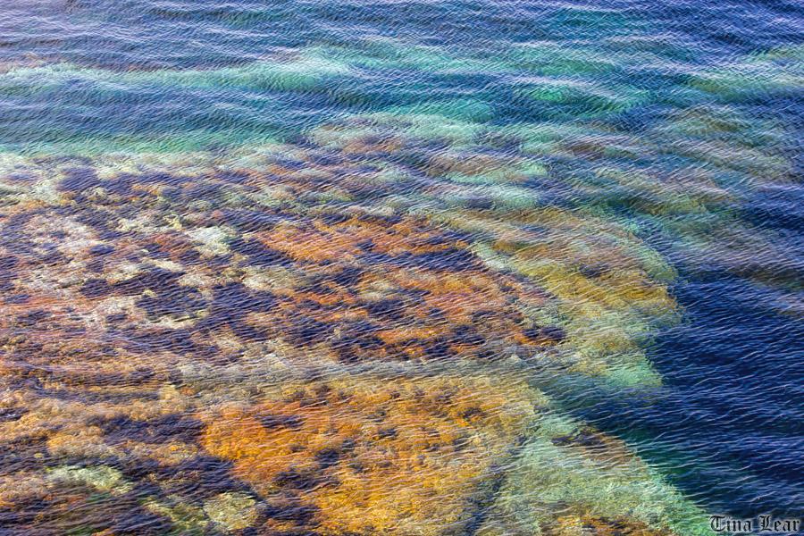 Day Trip to Stroma Island (6/6)