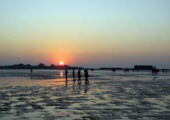 Camping sites near Mumbai Revdanda beach