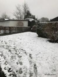 erster Schnee in Hamburg