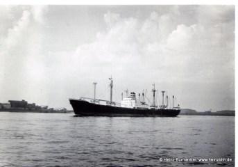 Blick über die Elbe 60er Jahre (Pap195)