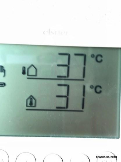 29. Mai Temperatur im Garten und im Wintergarten.