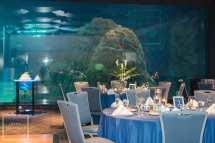 Camden Adventure Aquarium Wedding