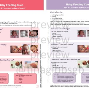 baby feeding cues baby hunger cues handout