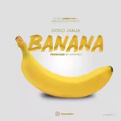 Dogo Janja Banana Mp3 Lyrics Video Download