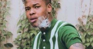 Nasty c best rapper in africa 2018