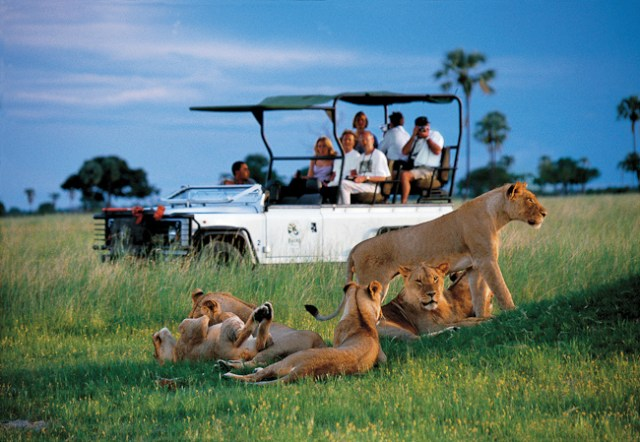 Best safari destinations in the world