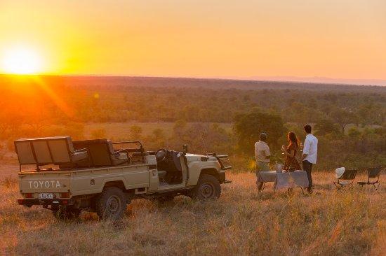 Best safari destinations in Africa 2019
