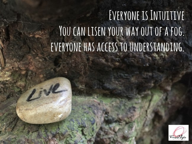 Everyone is intuitive