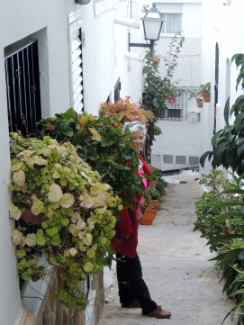 Abundance of flowers at Mojacar 22 Dec