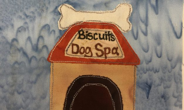 Block-A-Day 241 – The Dog Spa