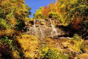 Autumn View of Amicalola Falls