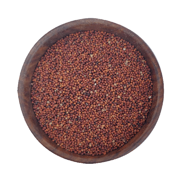 Buy Organic Finger Millet   Available at Best Quality Ragi Online