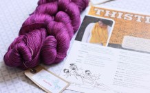2 skeins of Yarn Pony 'ShowPony 4-ply' (874 yds) ... lovely for Thistle or Botany!