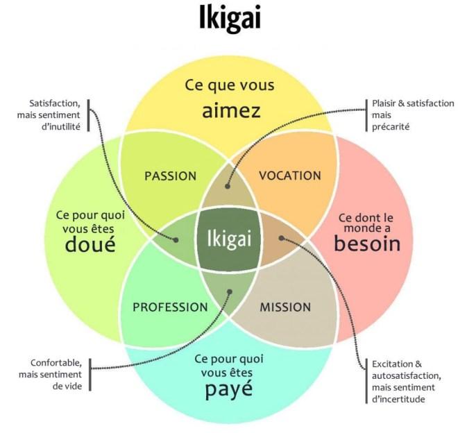 Représentation graphique de l'ikigai