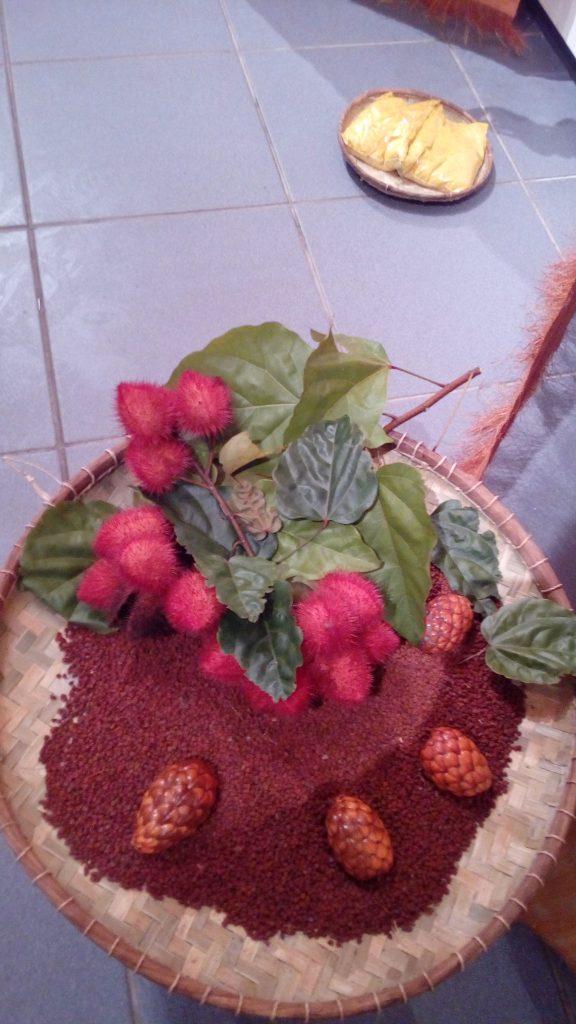 Fruits, feuilles et grains de roucou,  autre teinture employé pour des tatouages non permanents, teintes de roux