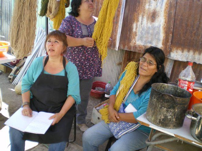 """Lors d'un atelier de teinture à Pica, Nord du Chili, ces femmes découvrent les possibilités des """"mauvaises herbes"""""""