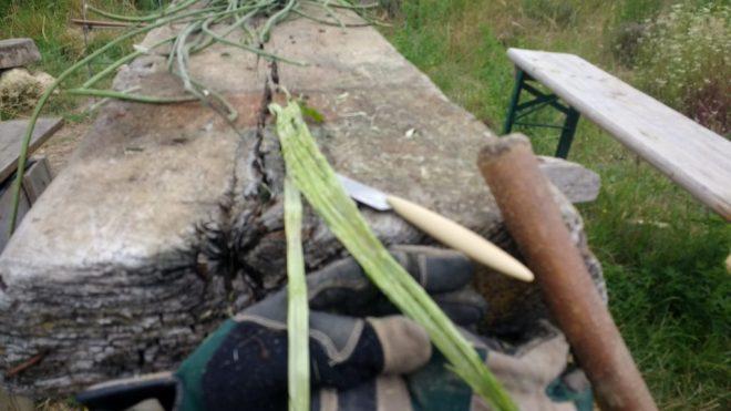 manche en bois pour frapper les orties
