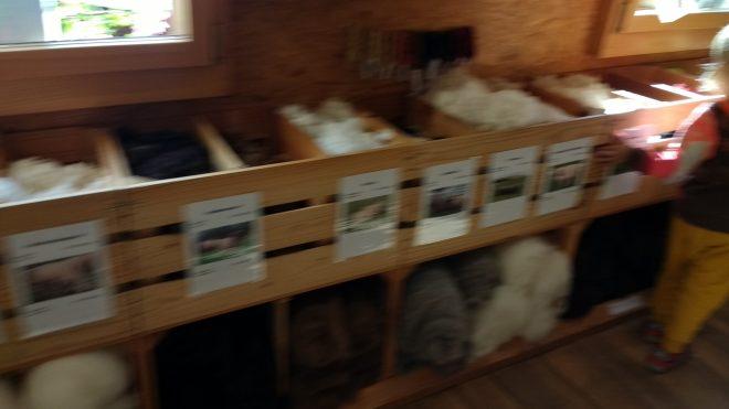 Ici, on peut découvrir la laine de nombreuses races ovines