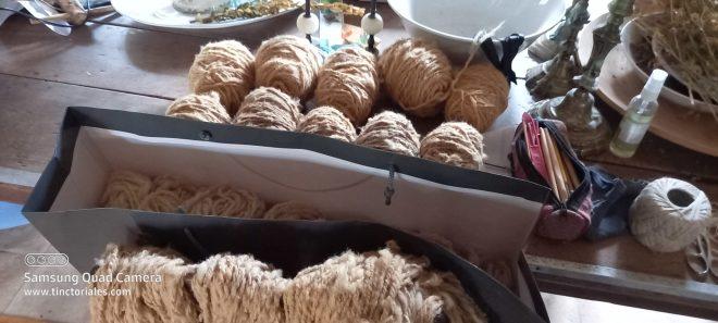 bleues du maine laine