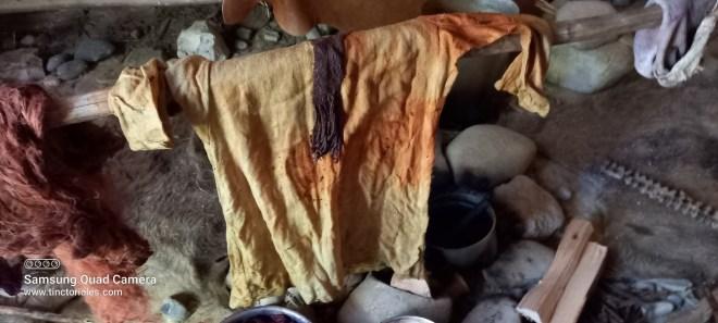 Premier état de la teinture de la robe d'une des filles de François