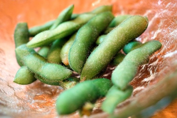 Edamame for dogs