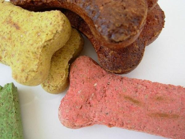 CBD dog treat