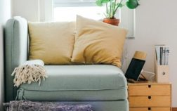 Pet-Friendly Minimalist Home