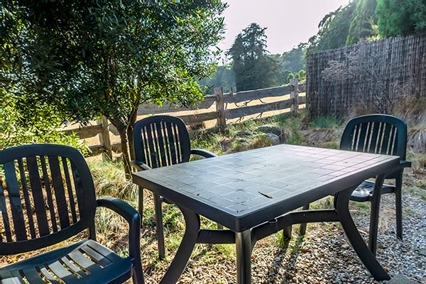 The outdoor garden setting of table and four chairs sits under a blackwood tree overlooking the alpaca paddock.