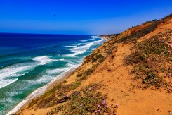 Torrey Pines State Natural Reserve Hike