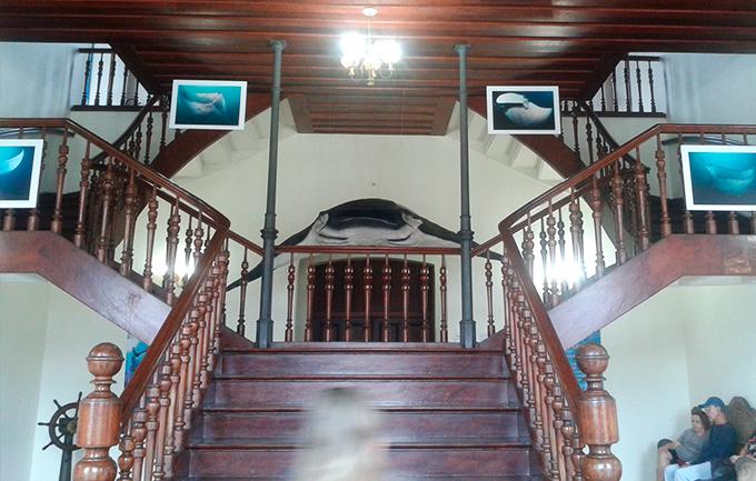 museu_pesca_santos_2