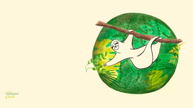 Bicho preguiça se esticando para pegar uma folhinha