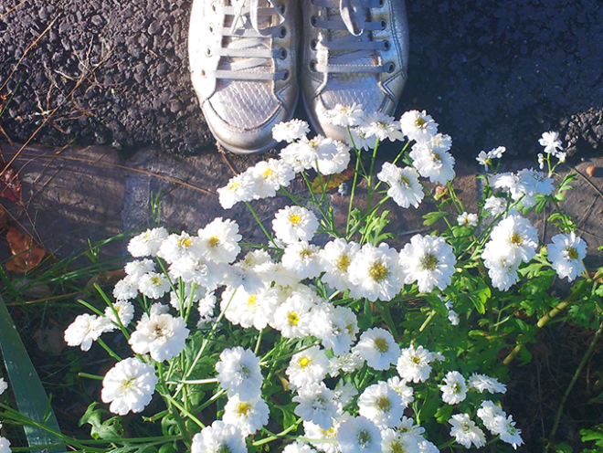 Pés e flores