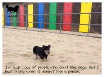 tinkerwolf-dog-photo-quotes-81-i-trust-a-dog